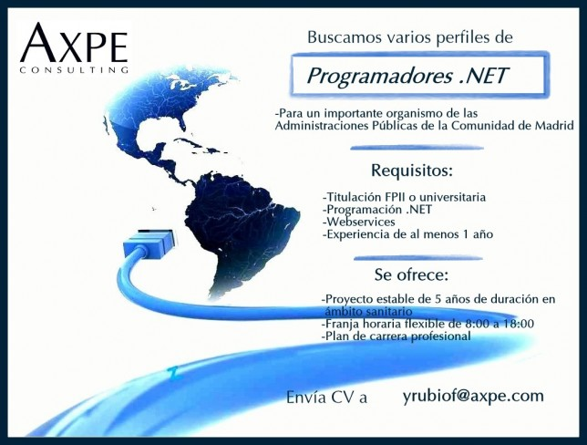 AXPE Programador.NET
